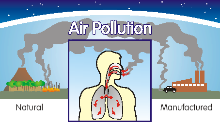 the negative impact of poor air quality on humans and plants Causes and effects of environmental pollution: animals – including humans – and plants could though pollution by industries mainly causes air pollution.