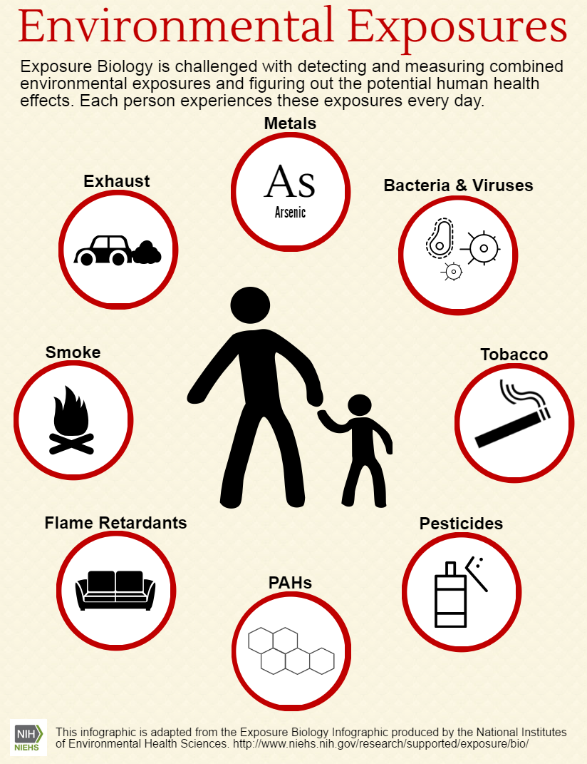 Infograph of Environmental Exposures