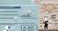 Collage of Infographics